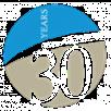 30 year Codec-dss image